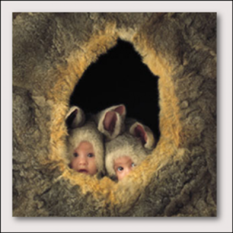 about me photo album anne geddes rodents. Black Bedroom Furniture Sets. Home Design Ideas